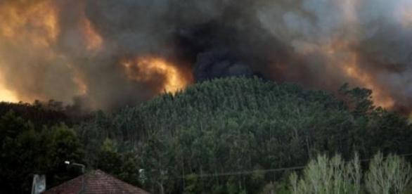 Incêndio em Albergaria-a-Velha