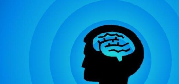 Az emberi agy hatással van környezetére.