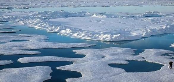 Jeges-tenger. Rohamosan olvad a jég