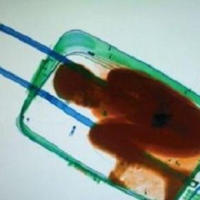 Copil de opt ani, ascuns în valiză