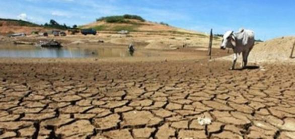 Desertification affecting the Atlantic Basin.