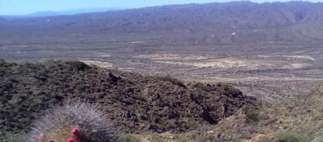 Trekking al Cerro El Morado
