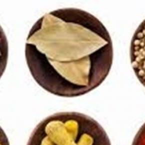 Fűszereink a konyhában és ételeinkben