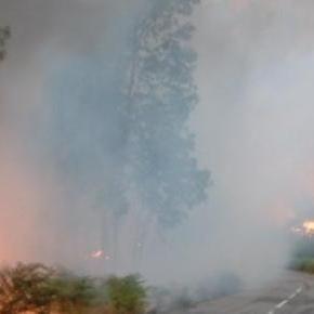 Incêndio em Ponte de Lima