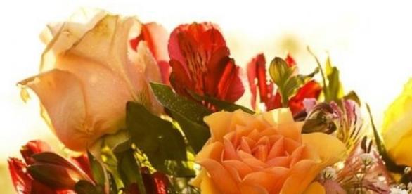 Dzień Matki 2015 już 26 maja