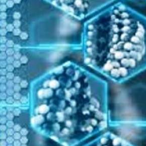 genom - zawartość naszych komórek