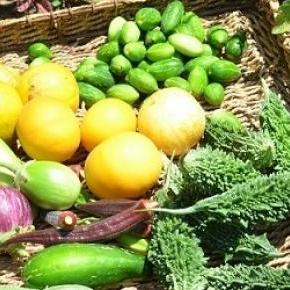 kép forrása: http://1.bp.blogspot.com/