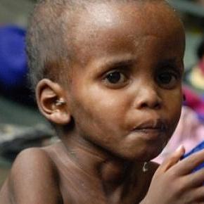 L'Afrique est la région la moins bien nourrie.