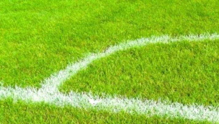 Pronostici playoff Serie B: Pescara-Vicenza e Avellino-Bologna