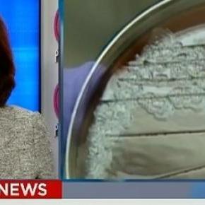 Wysłano żywego wąglika, CNN