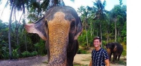 Cine a mai văzut un elefant care își face poză?