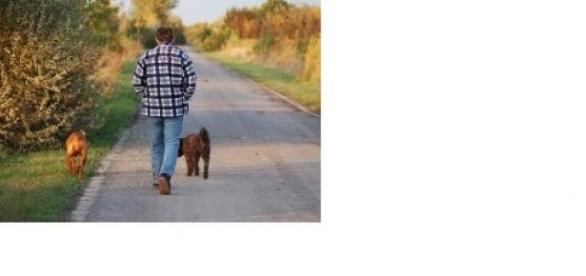 Kutya sétáltatás az egyik legjobb kikapcsolódás