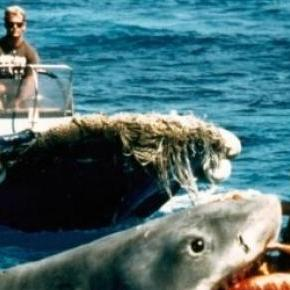 JAWS celebrates its 40th anniversary this June