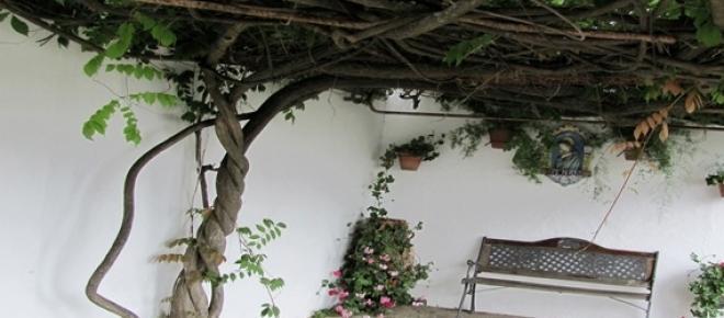 Jeśli na wakacje, to w Andaluzję!