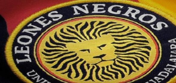 Los leones Negros, buscarán el milagro
