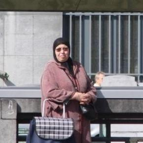 Der Islam als Bestandteil Deutschlands