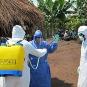 Liberia wolna od eboli - tak podaje WHO