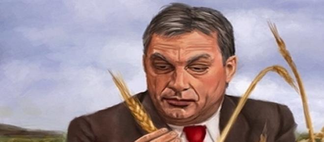 Grafika: Orbán Viktor búzakalásszal, egy régi Rákosi-kép parafrázisaként