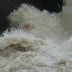 Powódź w Tibilisi, dzikie zwierzeta uciekły z ZOO