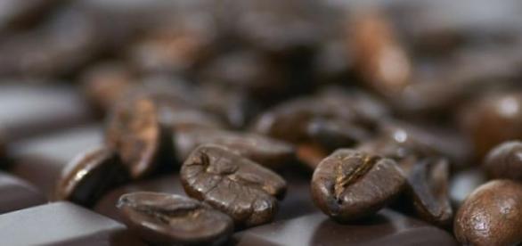 Кофе и шоколад вскоре могут исчезнуть с прилавков