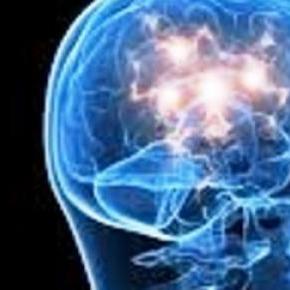 połączenie mózgu i układu odpornościowego