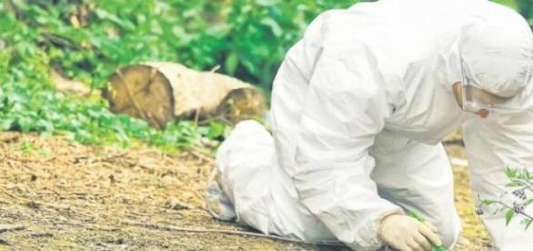Un bărbat a fost ucis și îngropat pe câmp!