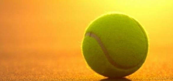 Серена Уильямс победила в турнире «Большого шлема»