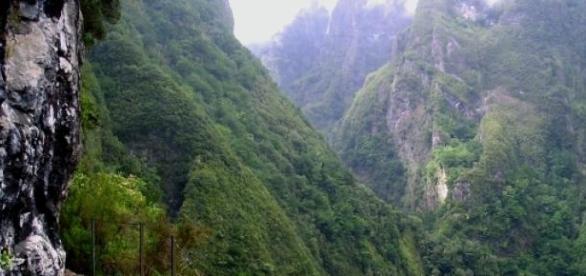 Levada do Caldeirão Verde, na ilha da Madeira.