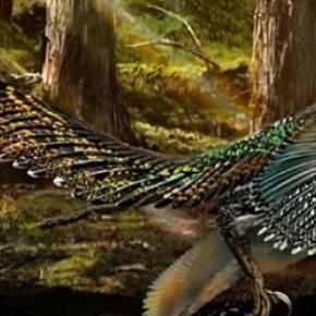 Reconstituição do novo fóssil de dinossauro.