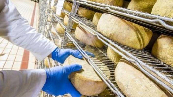 L'Europa del TTIP vuole dall'Italia il formaggio senza latte, a rischio il made in Italy