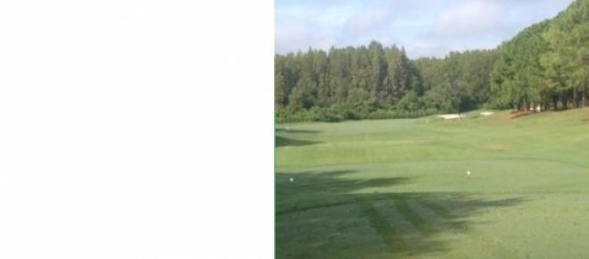 <p>Beautiful Tee box to fairway shot.</p>