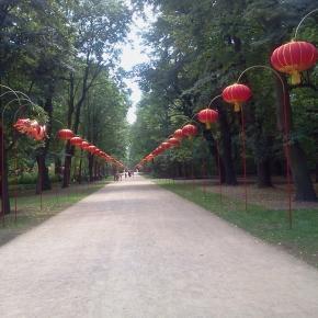 Łazienki: aleja chińskich lampionów. Fot. K. Krzak