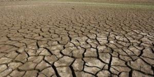 Pământul e în a șasea fază de extincție/img Epa