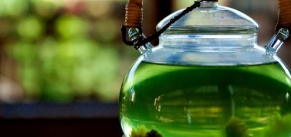 зеленый чай подобен зелью