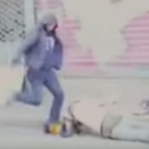 Doi rromi bătuți de politistii francezi