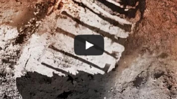Apollo 11 sulla Luna, oltre le ombre: la verità di Buzz Aldrin su Twitter