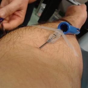 Os homens homossexuais já poderão dar sangue