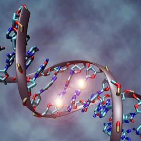 Anomalie genetică în structura ADN