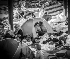 Doi refugiați sărutându-se pe tărâmul durerii