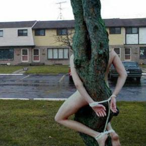 Femeia a fost legata de un copac, dezbracata
