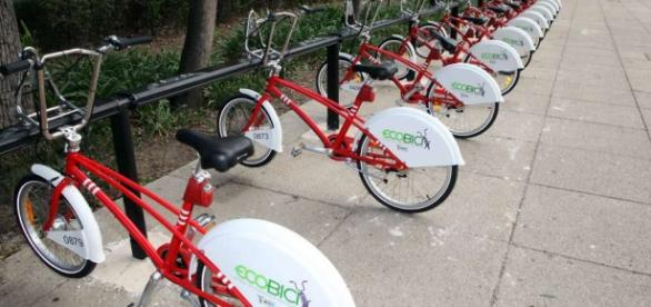 EcoBici crece en número de usuarios años tras año