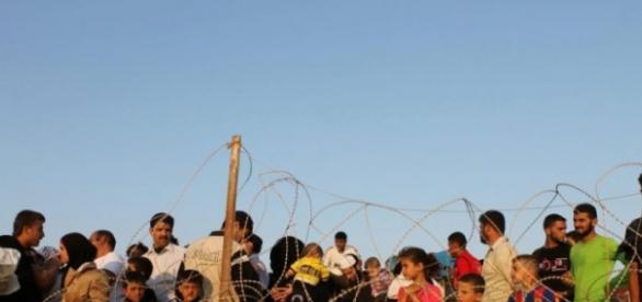 Imigranci zatrzymani przez drut kolczasty.