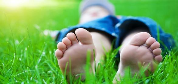 Bucati din corpul unui copil, gasite in parc