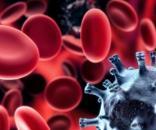 Celule ale sistemului imunitar
