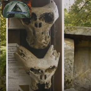 Misterul craniilor găsite în Rusia