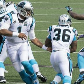 The Panthers secure the NFC South (Flickr)