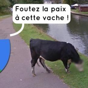 Street View respecte la vie privée de tout le monde, y compris des vaches