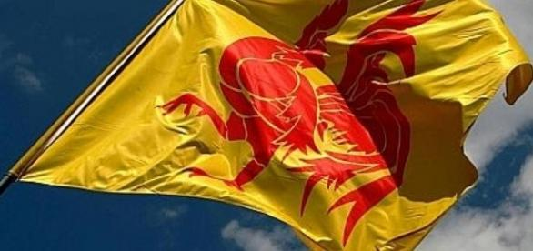 Le drapeau wallon auquel les Français devront s'habituer...