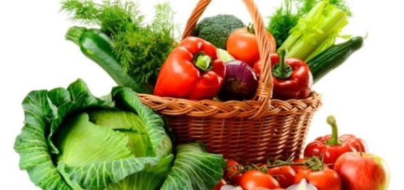 GoVeg360.com – Vegetarian & Vegan Spot - goveg360.com