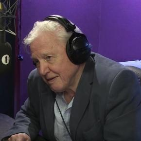 Sir David Attenborough doing voice-over work an Adele song. YouTube (Screencap-BBC Radio 1)